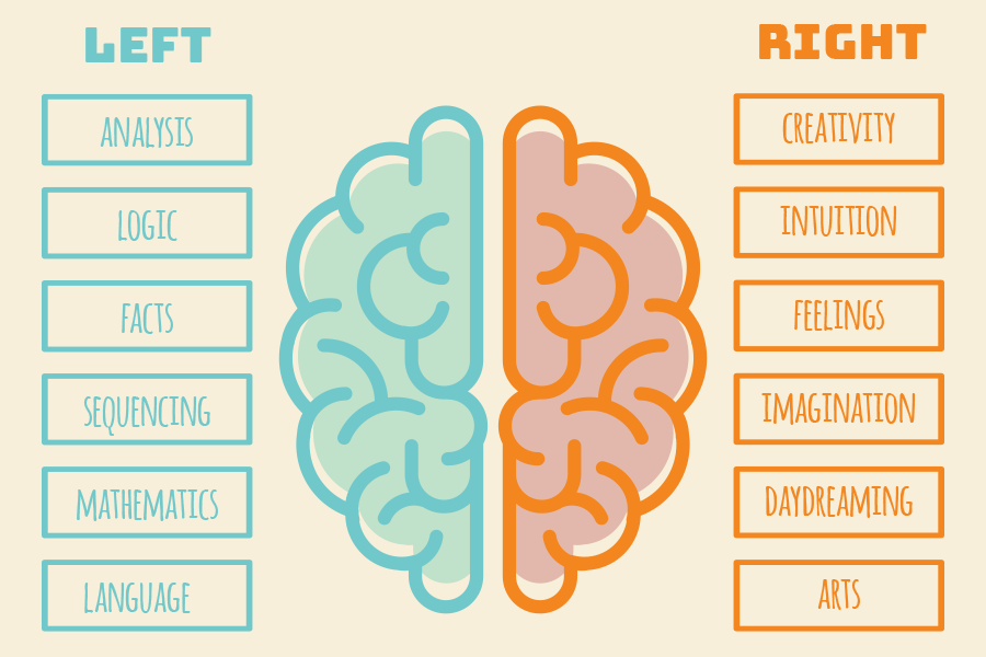 Right & left – the brain divided